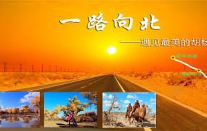 【阿拉善右旗图片】腾格里沙漠—额济纳旗—披星戴月6000公里,只为与你相遇