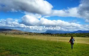 【凯恩斯图片】澳大利亚 墨尔本 凯恩斯 塔斯马尼亚 15天自驾游