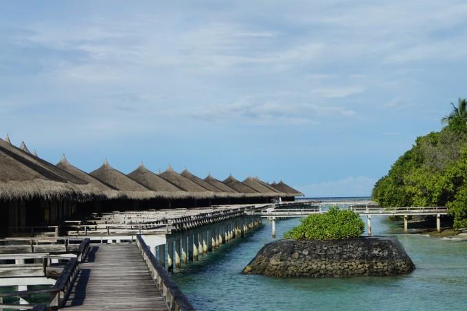 迟来的蜜月之旅~马尔代夫kuramathi island(库拉马提岛)