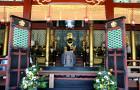 圣地巡礼-九州动漫巡礼专线车(寻找龙猫之旅 九州福冈+由布院龙猫+熊本天草海豚+鹿儿岛+特色火车)