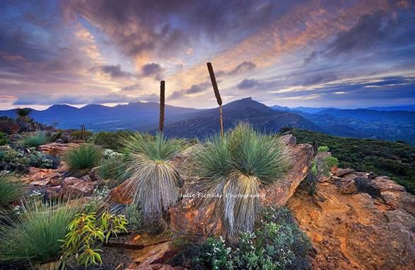 澳摄影师离群索居12年拍摄绝美荒野风景照(转)