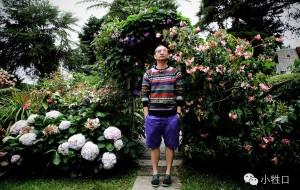 【金马伦高原图片】游走在马来西亚的英式情怀-金马伦高原