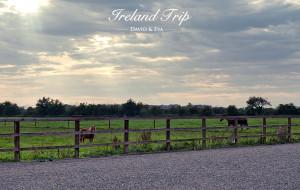 【都柏林图片】寻找传说中的四十种绿 ---- 爱尔兰蜜月之旅(持续更新ing)