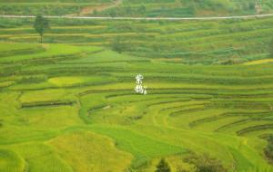 【新化图片】【紫鹊界梯田】--一幅流动的农耕画卷