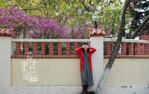 【山东图片】【蜂首纪念】花里行间--青岛足记