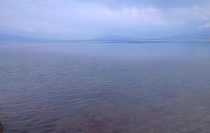【博乐图片】花海的花没有开——记赛湖之美