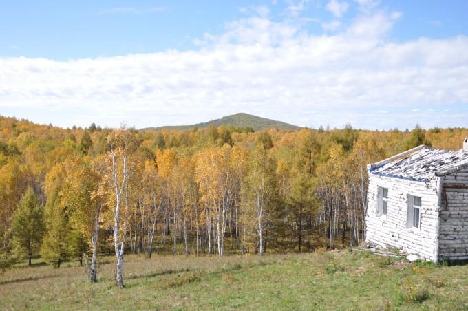 餐后没去桦树林景区,去了沿途一个小山包电视发射塔观全景.