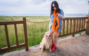 【呼和浩特图片】#消夏计划#【带狗自驾】孕2月,乌兰察布避暑。辉腾锡勒-岱海-呼和浩特2015.6.20-22