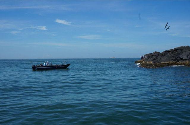 汕头南澳岛旅游攻略之候鸟天堂鸟岛游艇观光