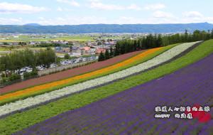 【富良野图片】温暖人心的东北之旅——7月北海道避暑游记