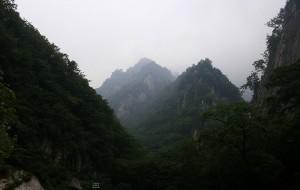 【西峡图片】镜头里的河南风景系列之十九----西峡老界岭