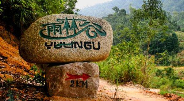 谷后/雨林谷其实是一个养生度假村,进谷后是一个综合区,有小卖部,...