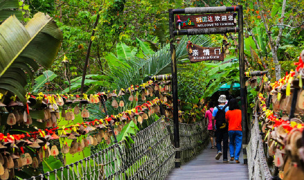 【官方专线巴士往返】呀诺达热带雨林风景区景点门票