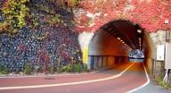 """?秋季游"""" 东京 """",一定要来这!【赏红叶秘境 · 奥多摩】"""