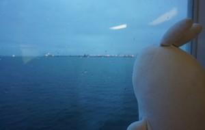 【温哥华岛图片】胖兔看天下——加拿大Part 2 Victoria→Mill Bay→Ucluelet