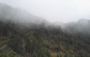 【吉安图片】大美井冈山之杜鹃山