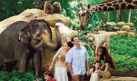 新加坡 日间野生动物园