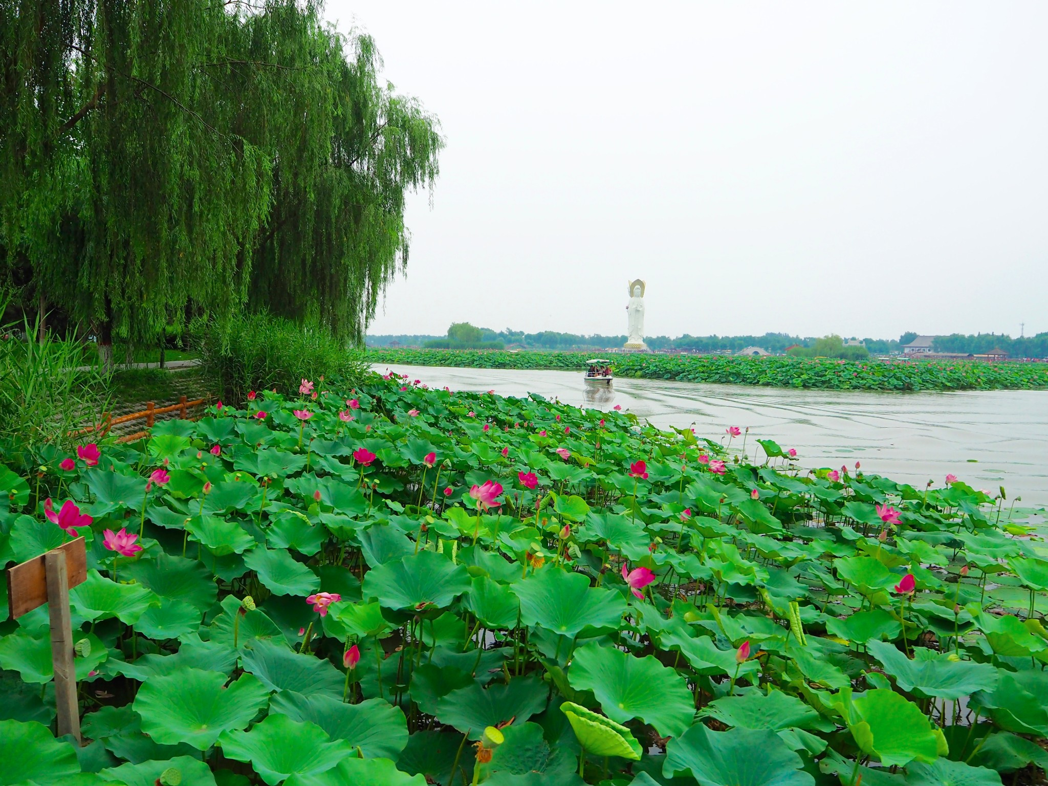 河北雄安新区科学划定白洋淀生态保护红线