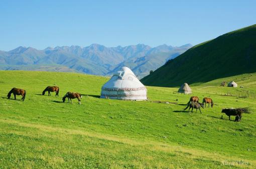 后沿312国道返回乌鲁木齐结束愉快的新疆深度游行程