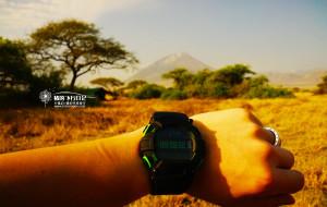【肯尼亚图片】没戴口罩的日子~我们在坦桑尼亚~生生不息的稀树草原和动物大迁徙~7月非洲【猪的飞行日记】
