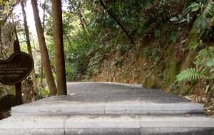 【东莞图片】艳阳下的森林公园