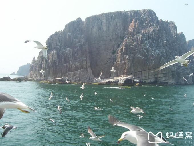 长岛月牙湾,九丈崖,望夫礁,仙境园,林海峰山,海上万鸟岛游记—山东