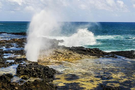 夏威夷可爱岛一日游(含威美亚峡谷和羊齿洞穴)