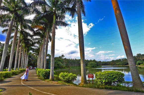 海南万宁兴隆热带植物园