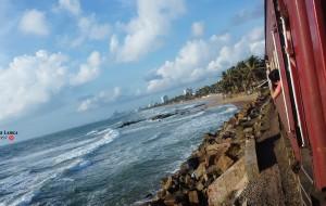 【雅拉国家公园图片】【忆锡兰】你是印度洋上的珍珠,我来过,不留遗憾。