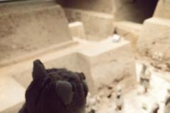 西安之行——一次心灵的洗礼