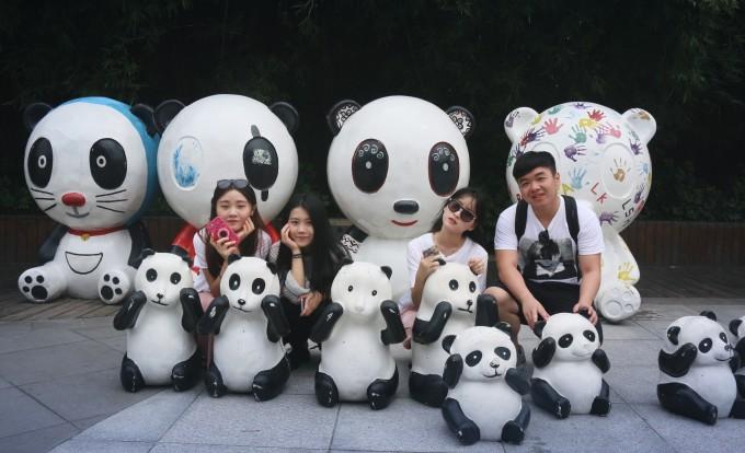 qq熊猫可爱背影图片