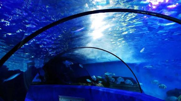 南京海底世界景点门票