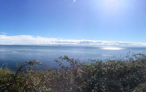 【维多利亚图片】欧尼一个人潇洒初游加美西海岸(维多利亚,西雅图,温哥华)图文游记➕无车党攻略