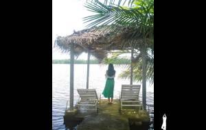 """【本托塔图片】一半野性,一半温情——""""印度洋的眼泪""""斯里兰卡十一日(六)本托塔"""