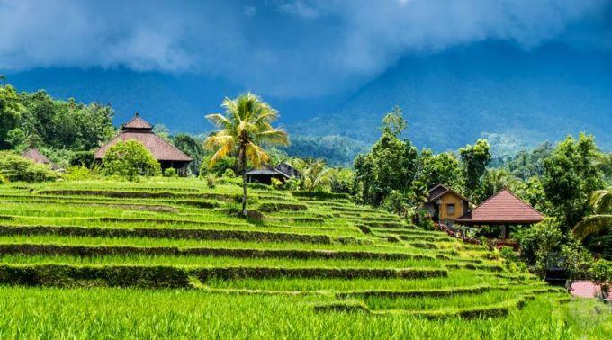 别样巴厘岛|游学院轻奢美食文化体验之旅