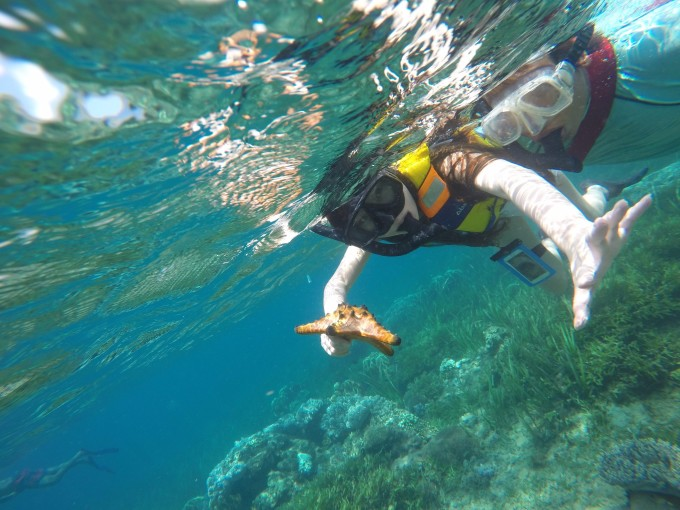 【巴厘岛】水下行走的珊瑚 游泳池的双鱼座少女