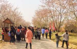 【茅山图片】#游记小赛#清明前的踏青红色之旅——茅山