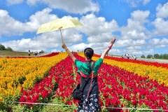 北海道探花之旅