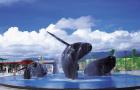 台湾 垦丁国立海洋生物博物馆门票(米其林指南推荐必游)