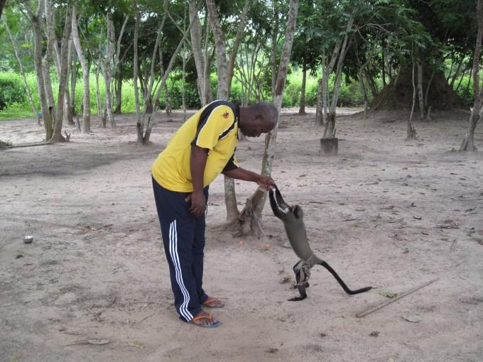 剛果(布)自助遊攻略