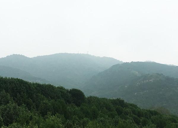 在雨后的北京谈论死亡