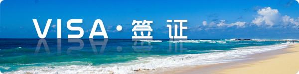【visa · 签 证】
