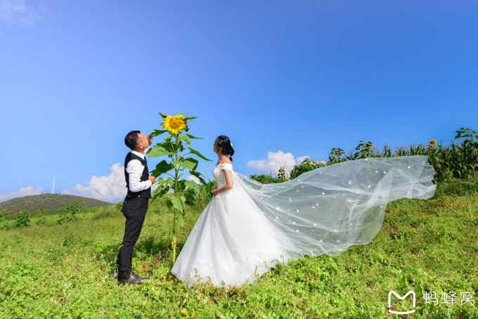 香格里拉婚纱_香格里拉婚纱店面图片