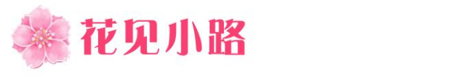 04→→→花见小路
